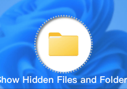 How to Show Hidden Files and Folders in Windows 11