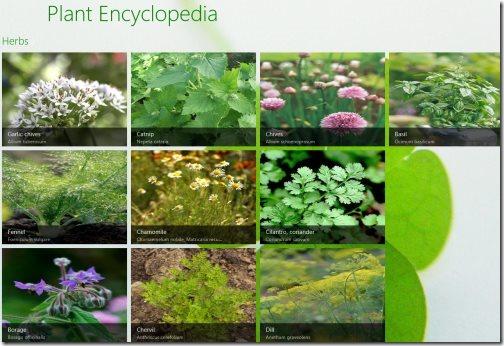 Windows 8 Encyclopedia Apps