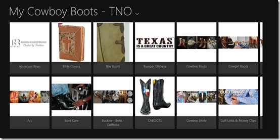 My Cowboy Boots - TNO