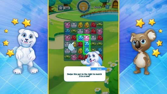 Puzzle Pets brief tutorial