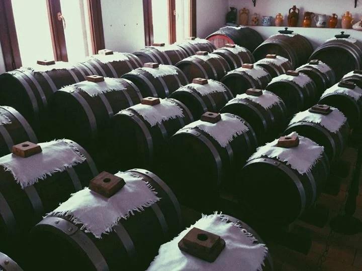 balsamic barrels