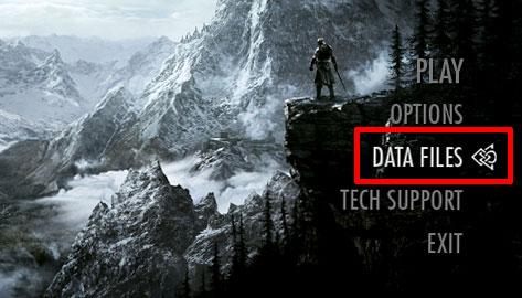 skyrim data files