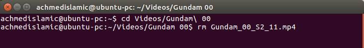 Menghapus File Dan Folder Dengan Terminal