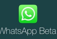 WhatsApp beta on Windows Phone