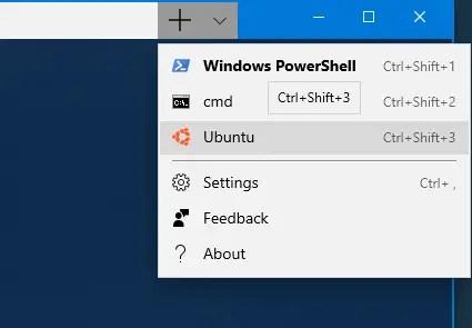 Ubuntu in windows terminal - icon added to ubuntu tab