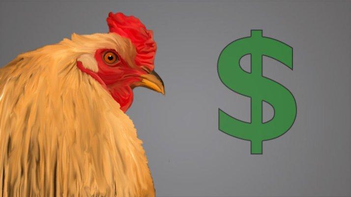 Harga Ayam