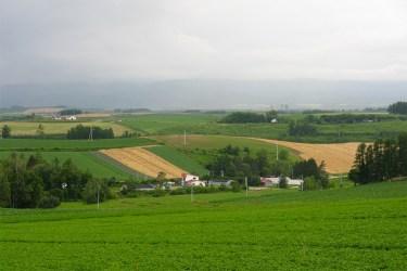 Hokkaido fields and ocean