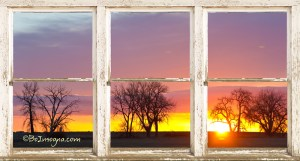 Colorful Tree Lined Horizon White Barn Picture Window Frame