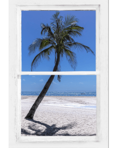 Palm Tree Portrait Tropical Window View 24″x36″x1.25″ Premium Canvas Gallery Wrap