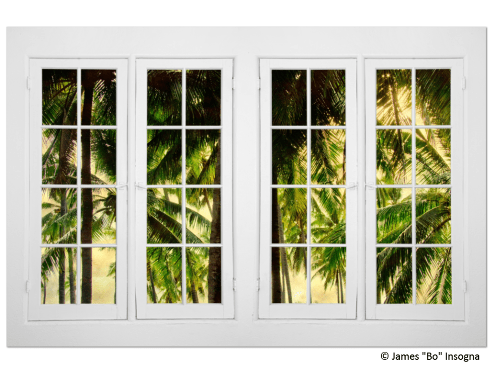 plantation windows