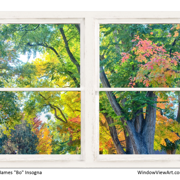 Colorful Forest Rustic Whitewashed Window View 30″x40″x1.25″ Premium Canvas Gallery Wrap