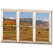 Window Views Of Horses