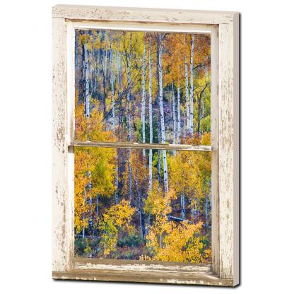 Aspen Tree Magic Cottonwood Pass White Rustic Window Art 24″x36″x1.25″ Premium Canvas Gallery Wrap