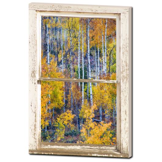 Aspen Tree Magic Cottonwood Pass White Rustic Window Art 24″x36″x1.25″ Premium Canvas Gallery Wrap