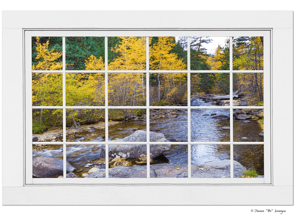 "Special Place In The Woods Large White Picture Window View Art 32""x48""x1.25"" Premium Canvas Wrap"