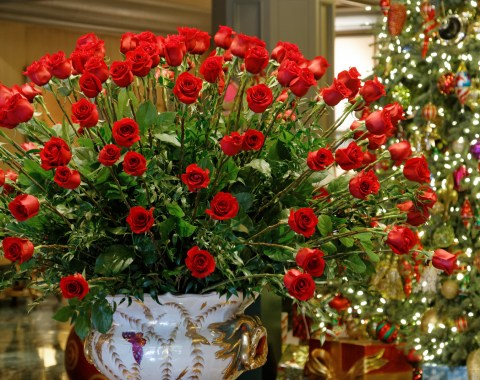 Beautiful arrangement of roses and decorated Christmas tree in the lobby of the Windsor Court Hotel in New Orleans