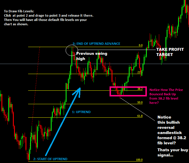 The Fibonacci Forex Trading Strategy with Reversal Bars