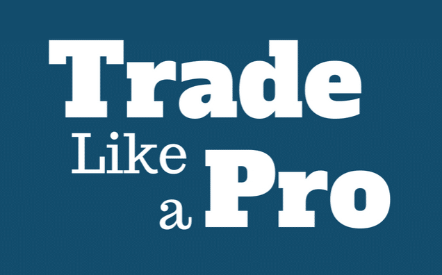 Trade the Foreign Exchange Rate Like a Pro