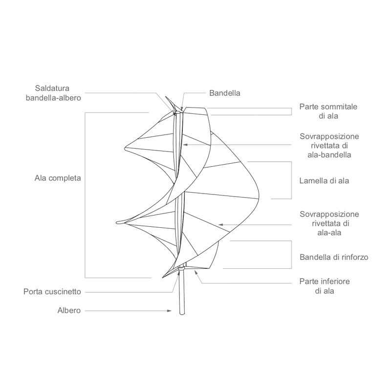 iris wireframe front view