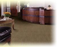 Windy City Commercial Carpet Services