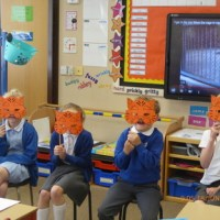 Watch out! Tigers in Year 2!