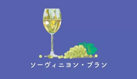 ハーブの香り、ソーヴィニヨン・ブランのおすすめワインと特徴
