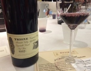 Trione Alexander Valley Red Wine