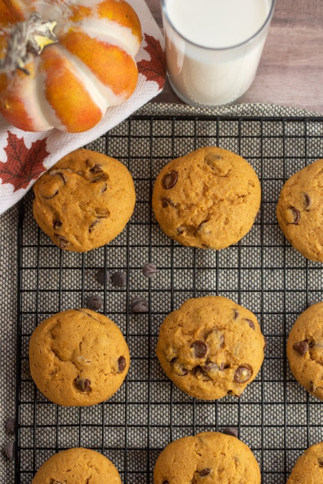 A cooling rack topped with pumpkin chocolate chip cookies. There's a glass of milk and small pumpkin in the background.