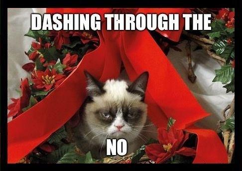 DASHing Through The No Grumpy Cat Wine Amp Dash