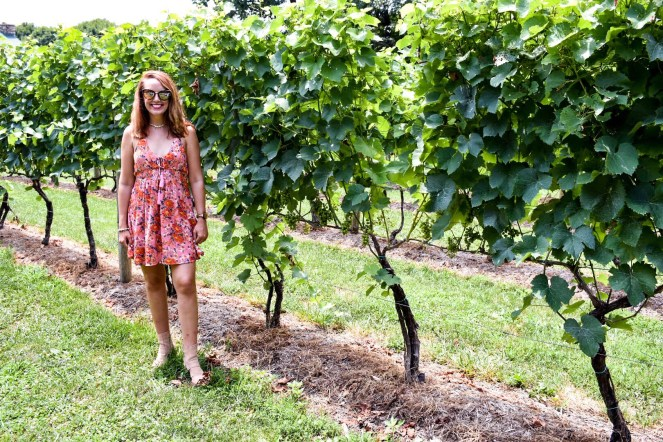 Wineries in Virginia
