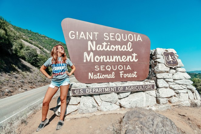 Guide to Sequoia National Park