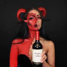 Alcohol Psychosis. #casillero Wineaware