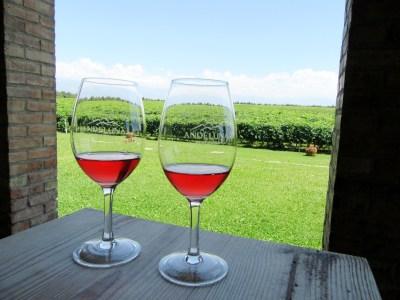 Andeluna, 1300 Malbec Rosé 2014, Uco Valley, Mendoza, Argentina, Wine Casual
