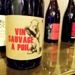 Château de la Terriére, Vin Sauvage à Poil, Régnié 2016, Beaujolais, France, Wine Casual