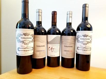 Wine Casual, TerraNoble CA1, CA2 and Gran Reserva carmenere.