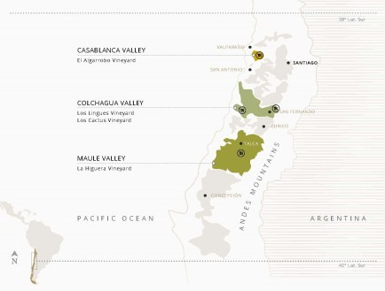 Photo: TerraNoble vineyards in Colchagua Valley, Maule Valley and Casablanca Valley.