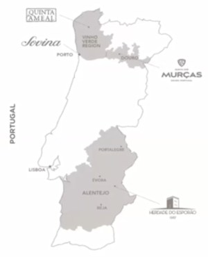Vinho Verde is the largest DOC in Portugal by vineyard area.  It shares a border with the Douro DOC to the east.