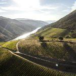 Esporão. Esporão's Focus on Sustainability in Portugal's Vinho Verde & Douro DOCs. Wine Casual