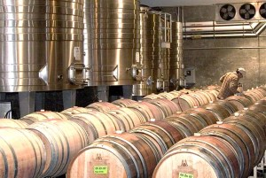 Take a winery tour - Hendry Barrel Room
