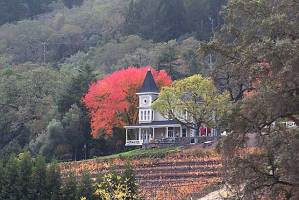 St. Clement winery