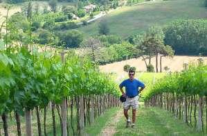 i giradoli vineyards