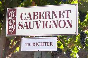 Rafanelli winery