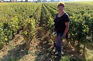 traveling burgundy