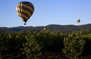 hot air balloon wine