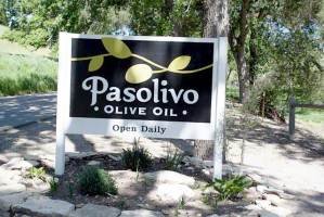 Pasolivo oliveoil