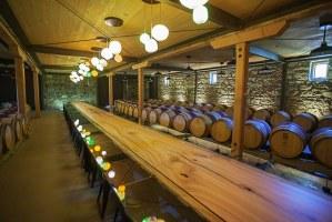 Bergfeld ghost winery