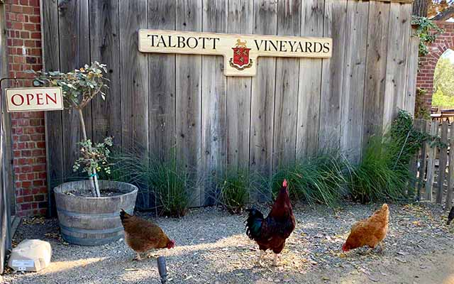 Talbott vineyards tasting room