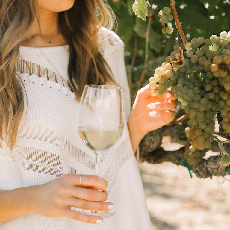 Napa vineyard tour
