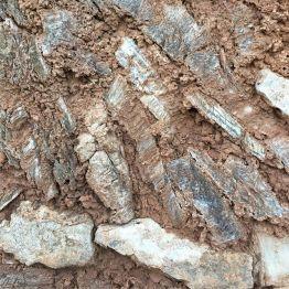 Soil Profile in Terroir al Limit Pedra de Guix