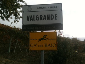 Sign of the noble vineyard of Valgrande, a great Barbaresco produced by the Grasso family of Ca' del Baio.